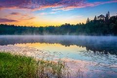Dimmig soluppgång på en lake Arkivbild