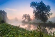 Dimmig soluppgångliggande över floden Royaltyfri Foto