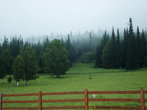 Dimmig sommarmorgon i bergbyn Arkivfoto