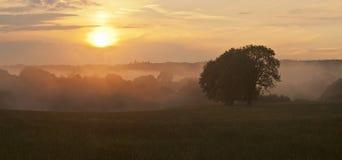 dimmig sundown Royaltyfria Bilder