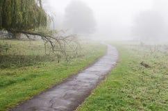 dimmig trail Arkivbilder