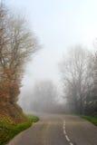 Dimmig väg för fara i skogen Royaltyfria Foton