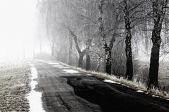 dimmig vägvinter Fotografering för Bildbyråer