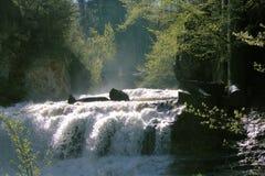 dimmig vattenfall Arkivbild