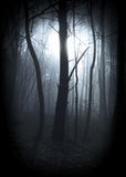 Dimmig vignetted skog Arkivbilder