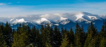 dimmiga berg Vinter i berg Vinter i Ukraina för ligganderussia för 33c januari ural vinter temperatur Royaltyfria Foton