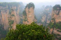Dimmiga berg Zhangjiajie Royaltyfria Bilder