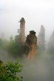 Dimmiga berg Zhangjiajie Royaltyfri Fotografi