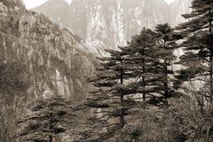 Dimmiga Huangshan berg Royaltyfria Bilder