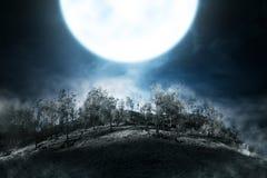 Dimmigt berg med den gröna skogen royaltyfri fotografi