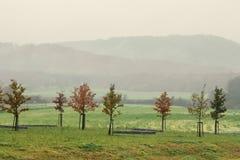 Dimmigt höstlandskap arkivfoto