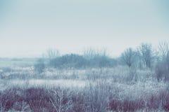 Dimmigt landskap arkivbild