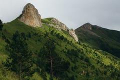 dimmigt landskap Sikt fr?n berg till dalen som t?ckas med dimmigt arkivbild