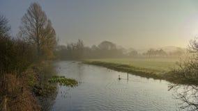 Dimmigt morgonljus på floden Meon nära Exton, söder besegrar nationalparken, Hampshire, UK arkivfoto