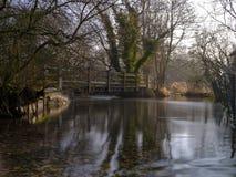 Dimmigt morgonljus p? floden Meon n?ra Exton, s?der besegrar nationalparken, Hampshire, UK royaltyfri foto