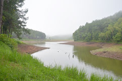 Dimmigt och regna i morgon på Pang Ung i Mae Hong Son Arkivfoton