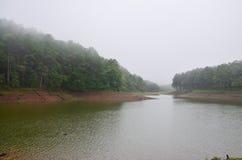 Dimmigt och regna i morgon på Pang Ung i Mae Hong Son Fotografering för Bildbyråer