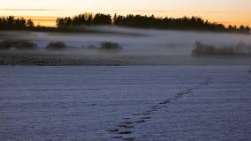 Dimmigt snöig landskap royaltyfria foton