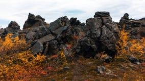 Dimmuborgir熔岩荒野临近冰岛的北部的湖Myvatn 免版税图库摄影