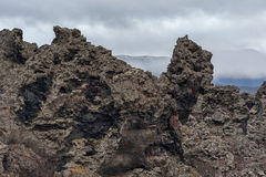 Dimmuborgir. Large area of unusually shaped lava fields east of Iceland. Stock Photos