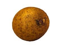 Dimocarpus龙眼在白色背景隔绝的新鲜水果宏指令 库存照片