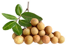 Dimocarpus longan Royalty Free Stock Images