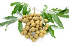 Dimocarpus, longan on background Royalty Free Stock Images
