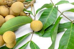 Dimocarpus, longan on background Stock Photography