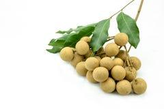 Dimocarpus, longan on background Stock Images