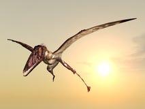 Dimorphodon ilustração royalty free