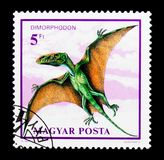 Dimorphodon, Dinosaurs serie, circa 1990. MOSCOW, RUSSIA - NOVEMBER 24, 2017: A stamp printed in Hungary shows Dimorphodon, Dinosaurs serie, circa 1990 Stock Photo
