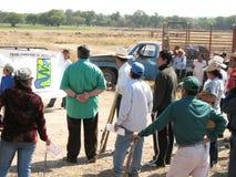 Dimostrazione degli ecologi arrabbiati su disboscamento Immagini Stock Libere da Diritti