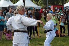 Dimostrazione di arti marziali Fotografia Stock