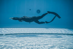 Dinâmico com desempenho das aletas (DYN) do Underwater Fotografia de Stock Royalty Free