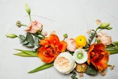 din blom- illustration för kortdesign Royaltyfri Fotografi