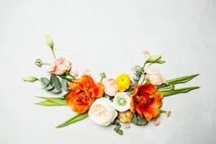 din blom- illustration för kortdesign Royaltyfria Foton
