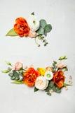 din blom- illustration för kortdesign Royaltyfri Foto