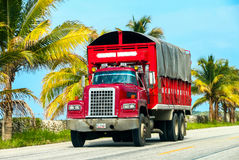 Dina D-600. CAMPECHE, MEXICO - JUNE 2, 2017: Bright red truck Dina D-600 at the interurban road royalty free stock image
