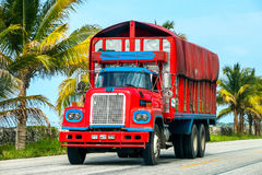 Dina D-600. CAMPECHE, MEXICO - JUNE 2, 2017: Bright red truck Dina D-600 at the interurban road stock photo