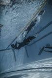 Dinamico con la prestazione delle alette (dina) da Underwater Fotografie Stock