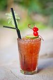Dinamitador tropical alcoólico de refrescamento do mestre do cocktail Imagem de Stock Royalty Free