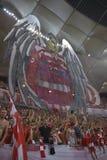 Dinamo - Steaua, coreografia 3D Immagini Stock Libere da Diritti