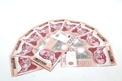 Dinars Royalty-vrije Stock Afbeeldingen