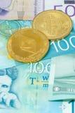 Dinars serbes de billets de banque et cryptos pièces de monnaie de concept de devises de concept d'investissements risqués de bit photographie stock libre de droits