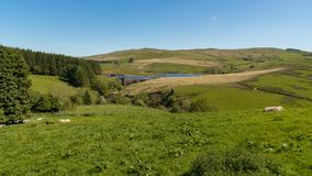 Dinas Reservoir, Ceredigion, Wales, UK Stock Images