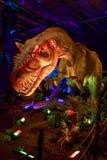 Dinasours avslöjade - allosaurusen Royaltyfria Bilder
