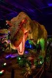 Dinasours avslöjade - allosaurusen Royaltyfri Foto