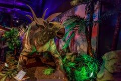 Dinasours avslöjade - stegosaurusen Arkivfoton