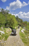 dinde de safari de la jeep s Photo stock