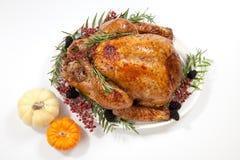 Dinde de thanksgiving sur le blanc Photos libres de droits
